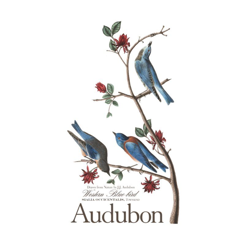 John James Audubon Bluebirds by Official National Audubon Society Retail Store