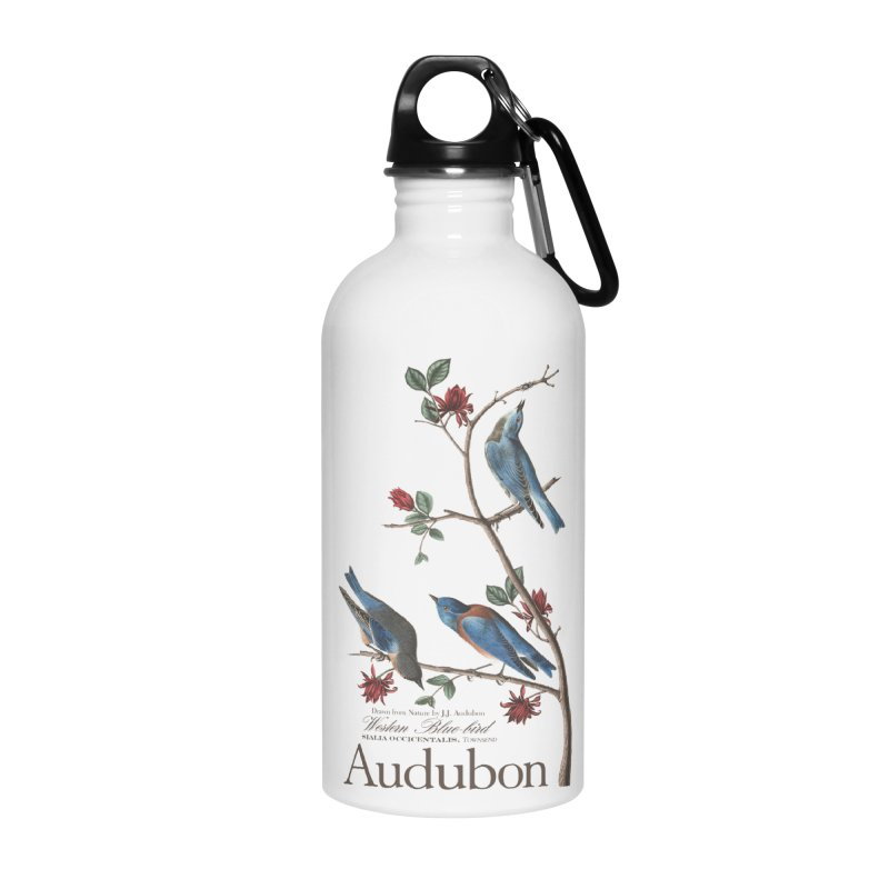 John James Audubon Bluebirds in Water Bottle by Official National Audubon Society Retail Store