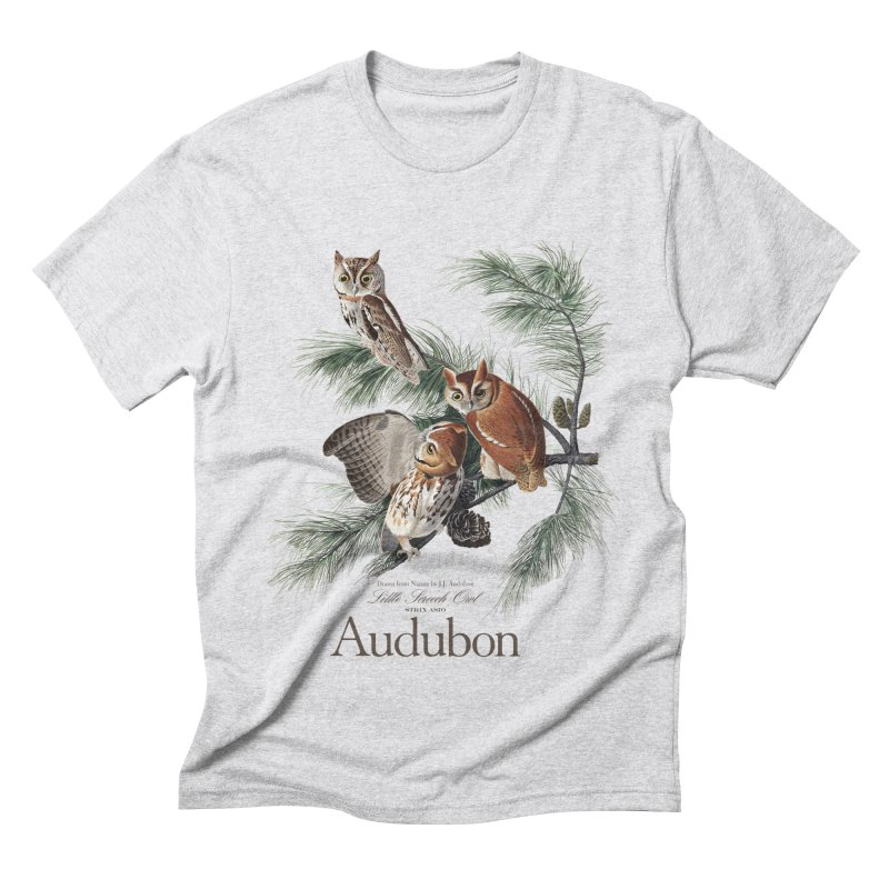 John James Audubon Screech Owls in Men's Triblend T-Shirt Heather White by Official National Audubon Society Retail Store