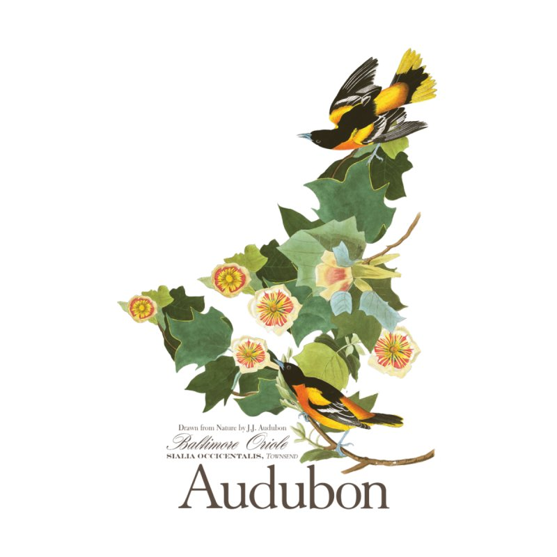 John James Audubon Oriole by Official National Audubon Society Retail Store