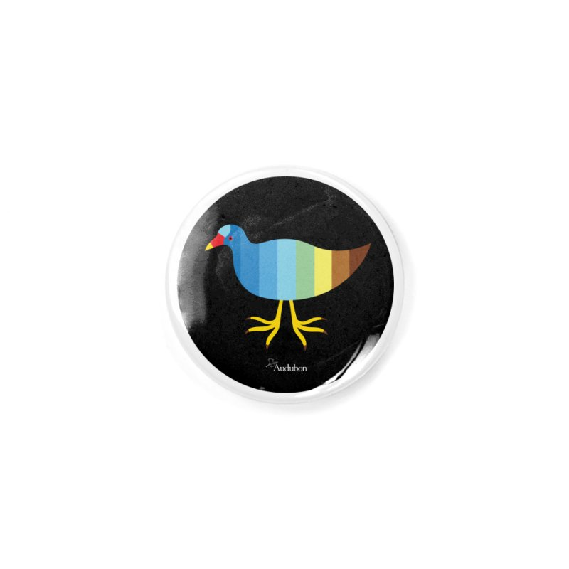Purple Gallinule by Olympia Zagnoli Accessories Button by Official National Audubon Society Retail Store