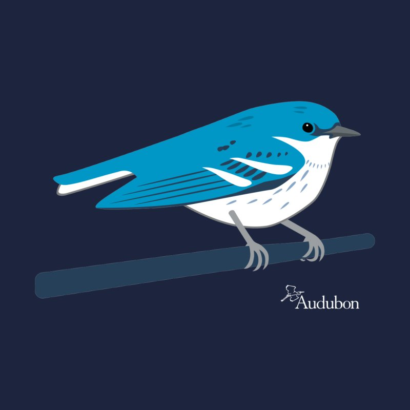 Cerulean Warbler by Shayna Marchese Women's T-Shirt by Official National Audubon Society Retail Store