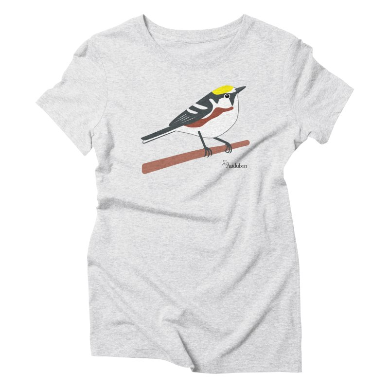 Chestnut-sided Warbler by Shayna Marchese Women's T-Shirt by Official National Audubon Society Retail Store