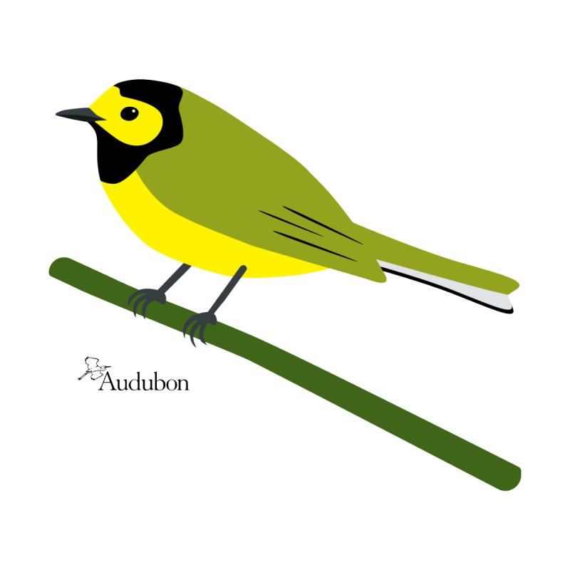 Hooded Warbler by Shayna Marchese Women's T-Shirt by Official National Audubon Society Retail Store