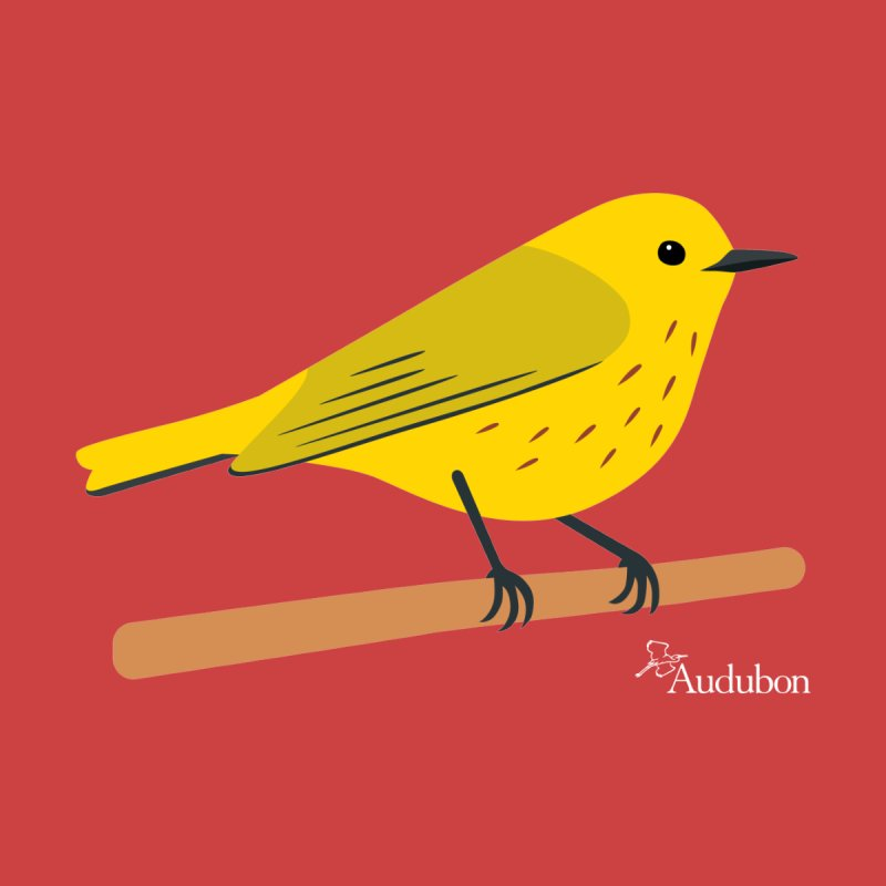 Yellow Warbler by Shayna Marchese Men's T-Shirt by Official National Audubon Society Retail Store