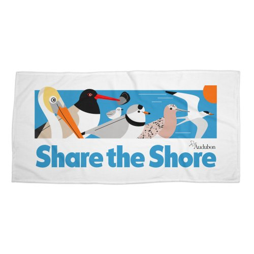 Share-The-Shore