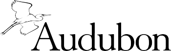 Official National Audubon Society Retail Store Logo