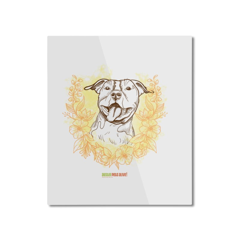 Ray of Sunshine Home Mounted Aluminum Print by Austin Pets Alive's Artist Shop