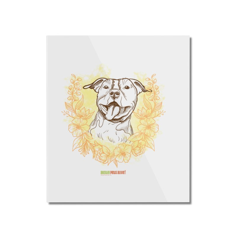 Ray of Sunshine Home Mounted Acrylic Print by Austin Pets Alive's Artist Shop