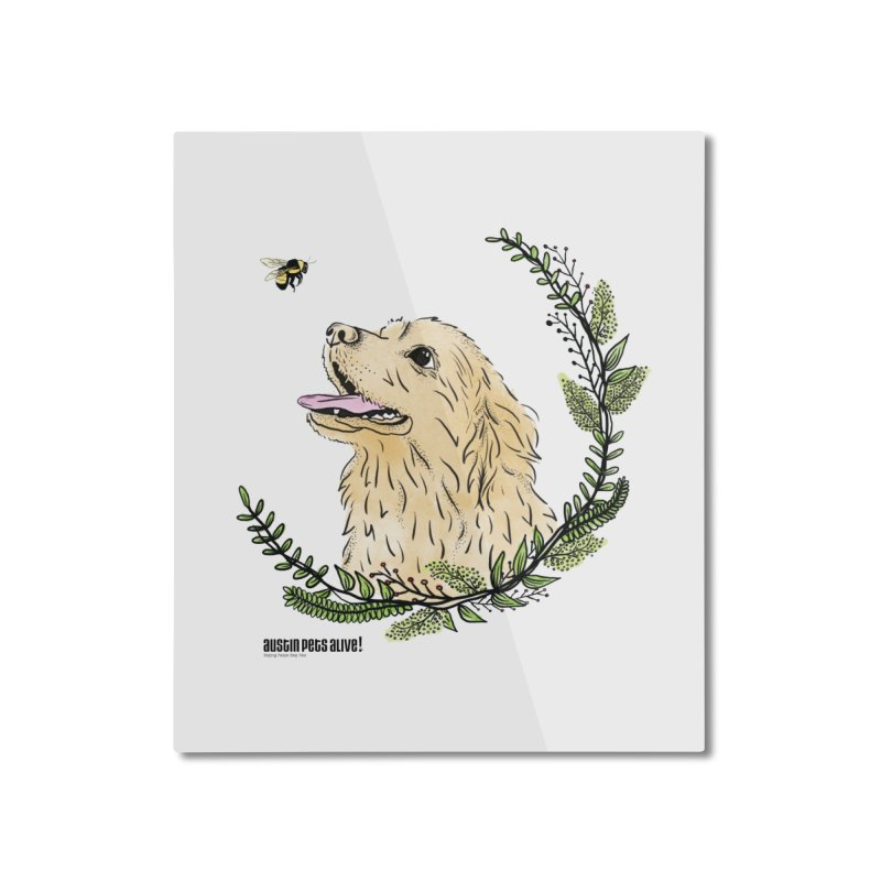 Dog Days Home Mounted Aluminum Print by Austin Pets Alive's Artist Shop