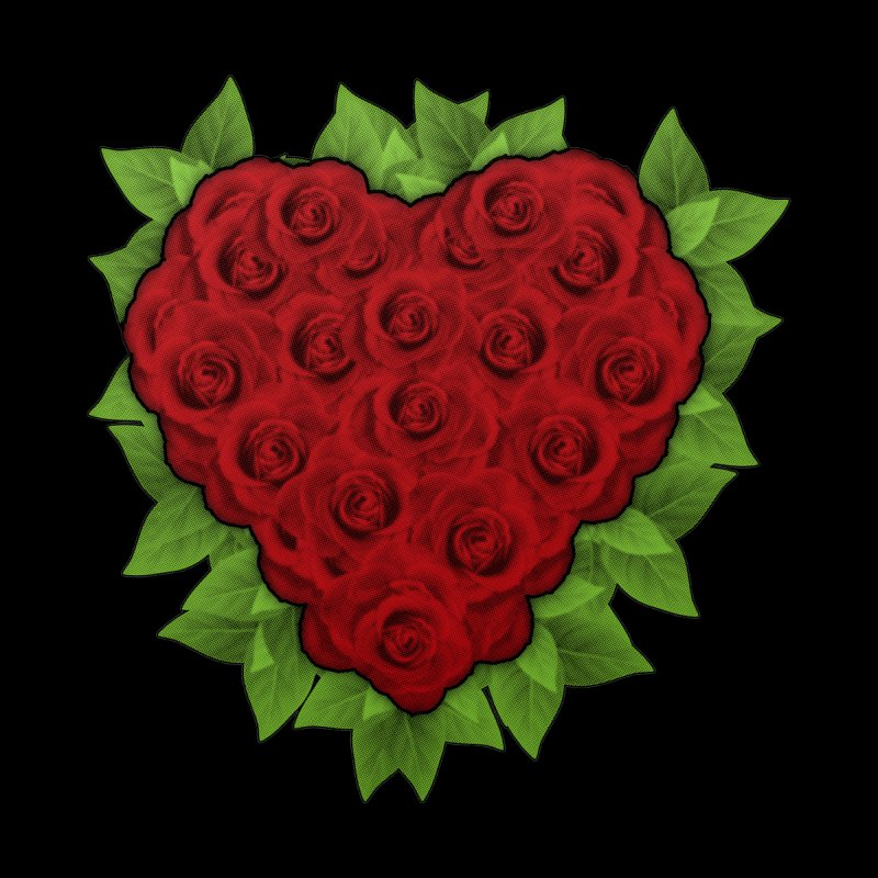 Heart of Roses by AXmediaLLC