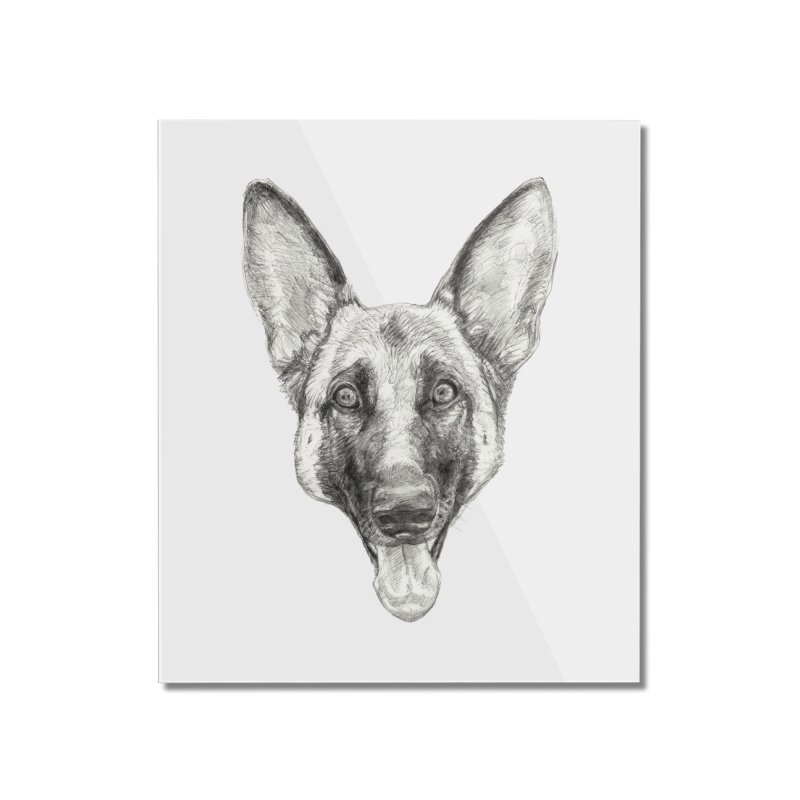 Cleo, the German Shepherd Home Mounted Acrylic Print by Ayota Illustration Shop