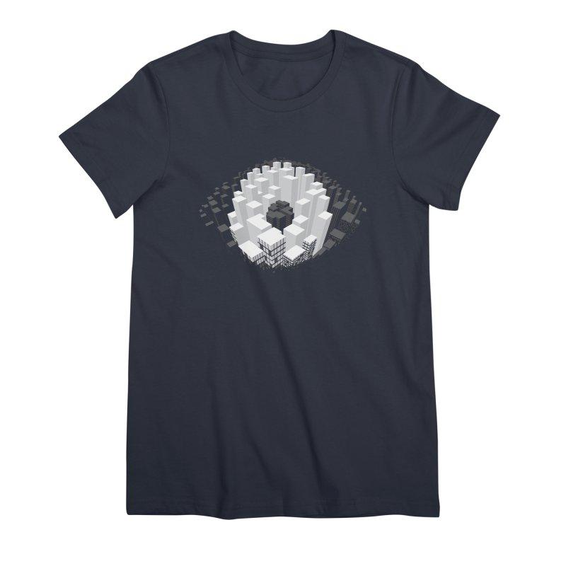 Bird's Eye View Women's T-Shirt by B4 Abraham's Artist Shop