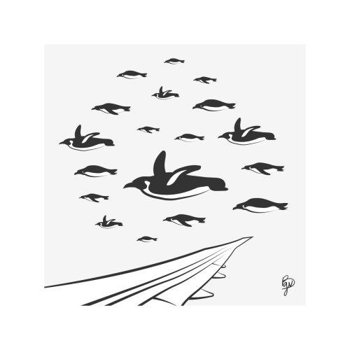 Flock-Of-Penguins