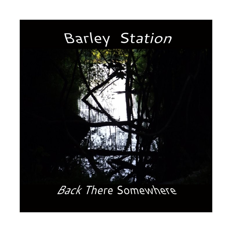 Barley Station's 'Back There Somewhere' Album Art Products by The Barley Station Store