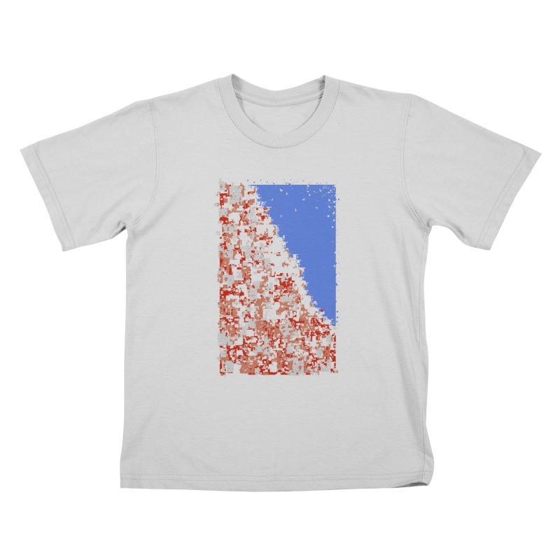 Population Densely Kids T-Shirt by barmalisiRTB