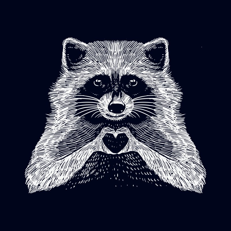Love Raccoon Home Fine Art Print by barmalisiRTB