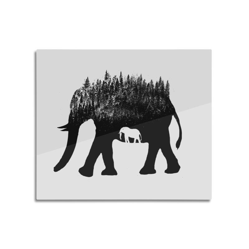 Nature elephant Home Mounted Aluminum Print by barmalisiRTB
