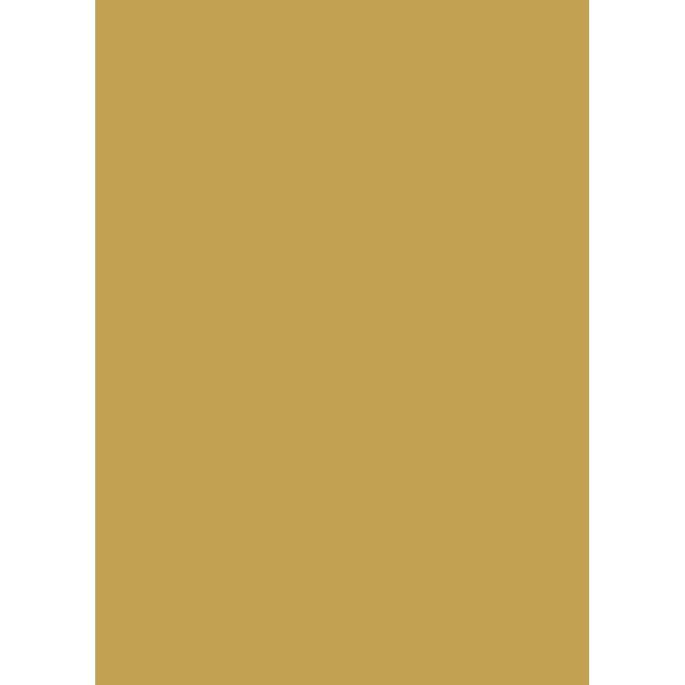 Baron Wolf Creative Logo