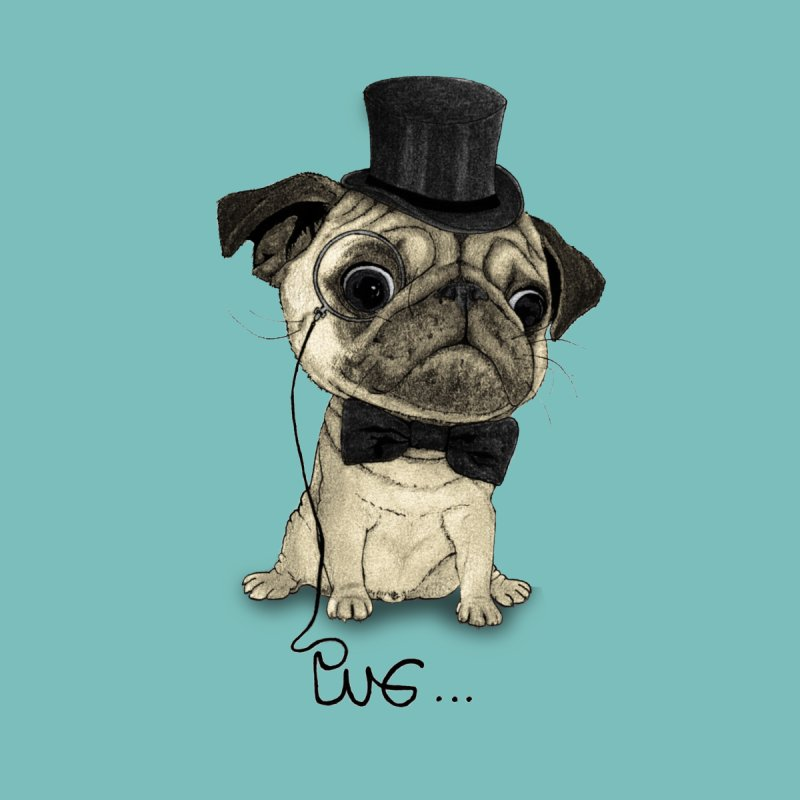 Pug; Gentle Pug by Barruf