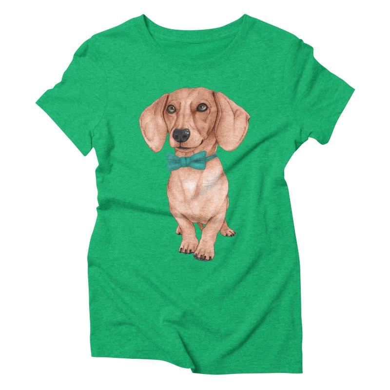 Dachshund, The Wiener Dog Women's Triblend T-Shirt by Barruf