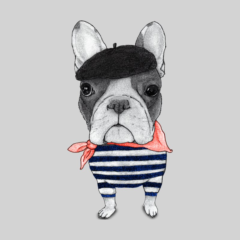 French Bulldog Women's V-Neck by Barruf