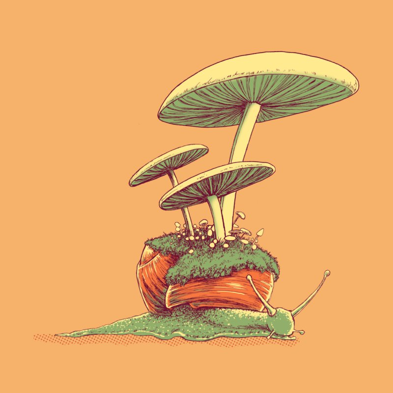 Shrooms & Snails by Barry Blankenship Shirts