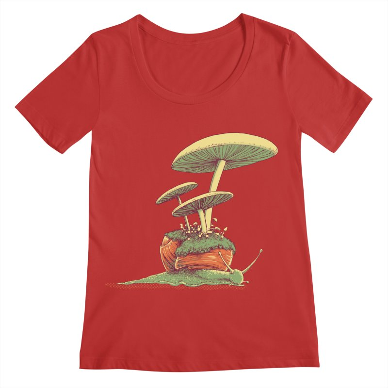Shrooms & Snails Women's Regular Scoop Neck by Barry Blankenship Shirts