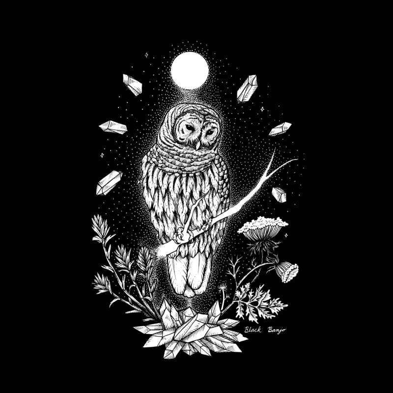 Owl & Crystals by Black Banjo Arts