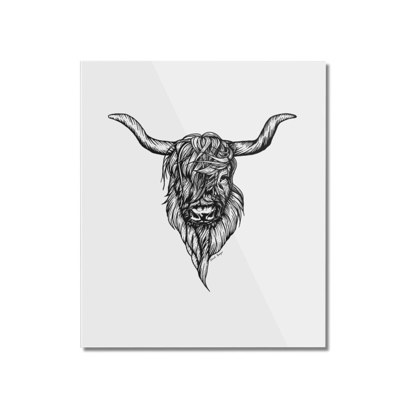 The Highland Cow Home Mounted Acrylic Print by Black Banjo Arts