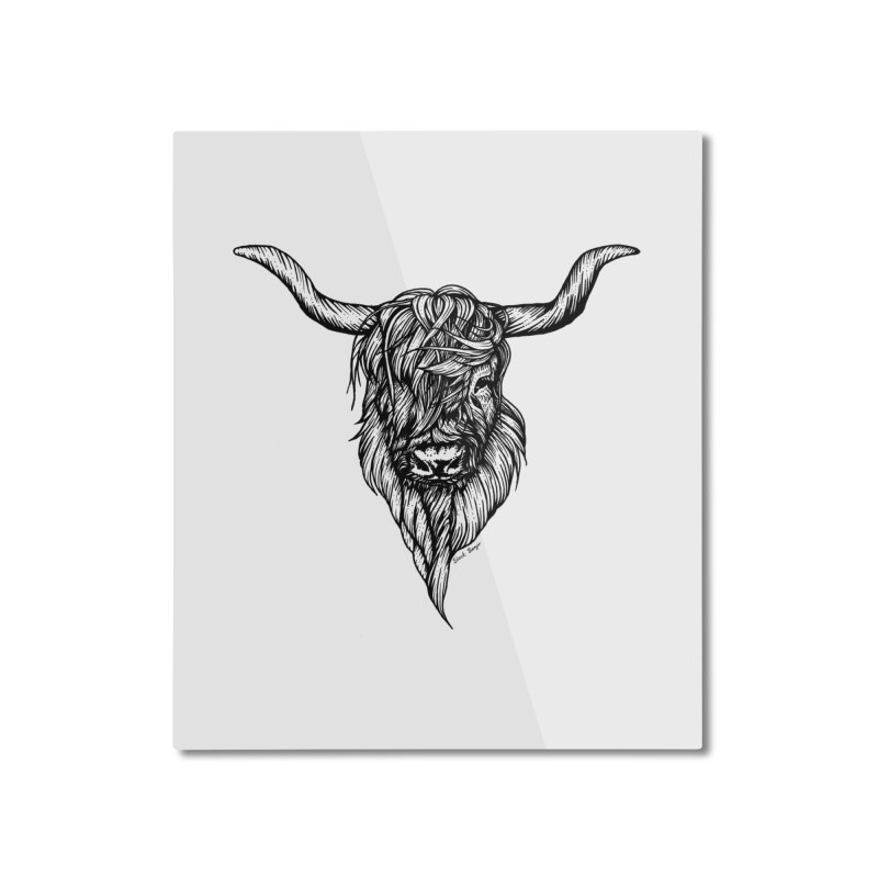 The Highland Cow Home Mounted Aluminum Print by Black Banjo Arts