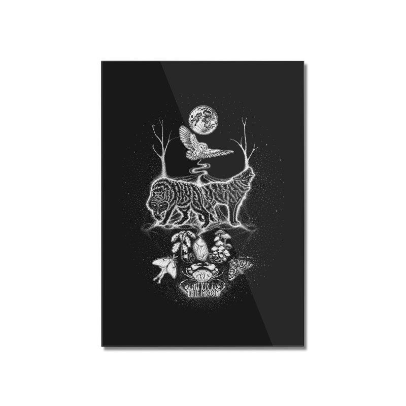 The Moon XVIII Home Mounted Acrylic Print by Black Banjo Arts