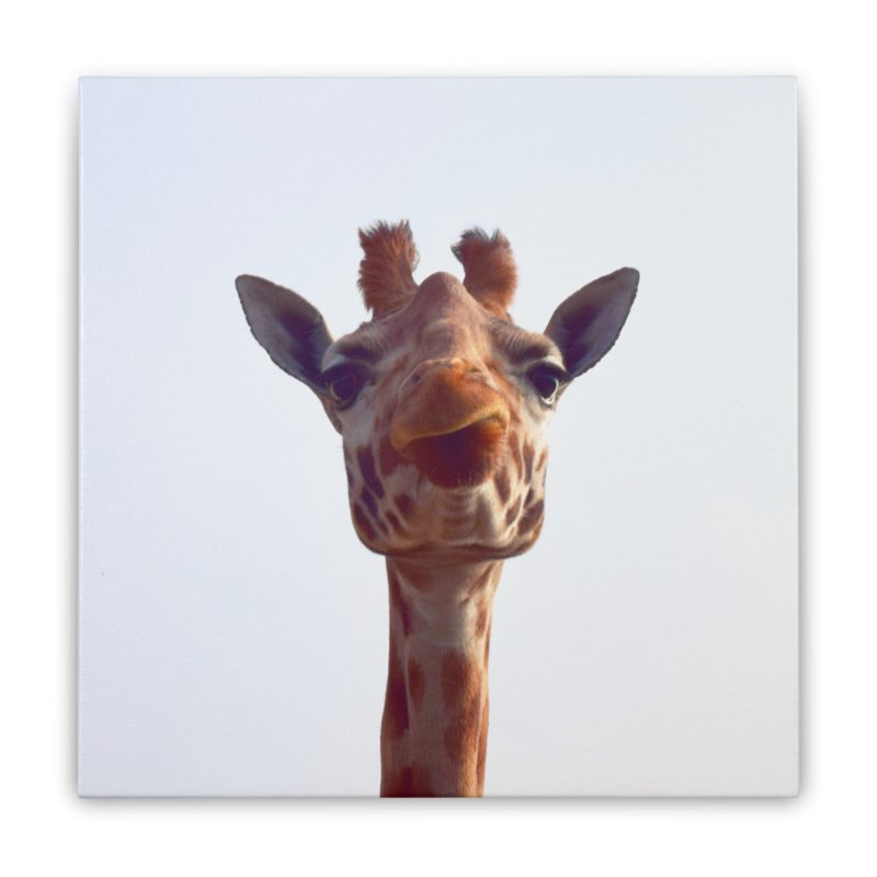 Giraffe Home Stretched Canvas by blackblizzard's Artist Shop
