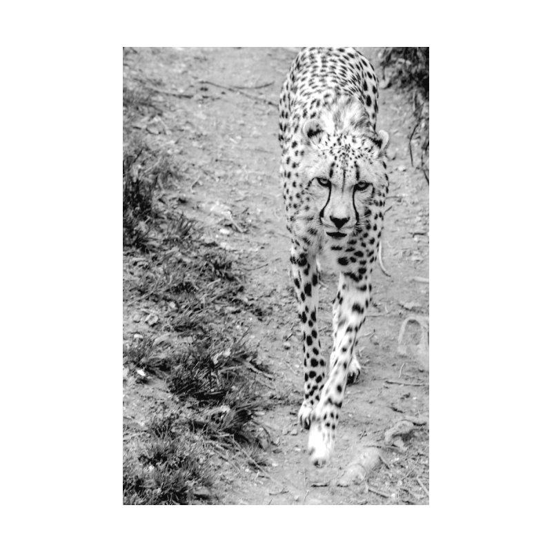 Cheetah Men's Pullover Hoody by Black Rhino Studios