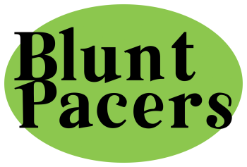 bluntpacers's Artist Shop Logo