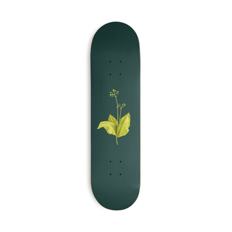 Wild Garlic Plant Botanical Art Accessories Deck Only Skateboard by Boriana's Artist Shop
