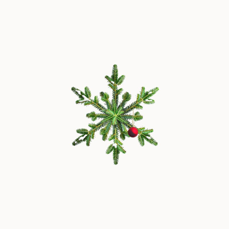 Beautiful Snowy Pine Snowflake Christmas by Boriana's Artist Shop