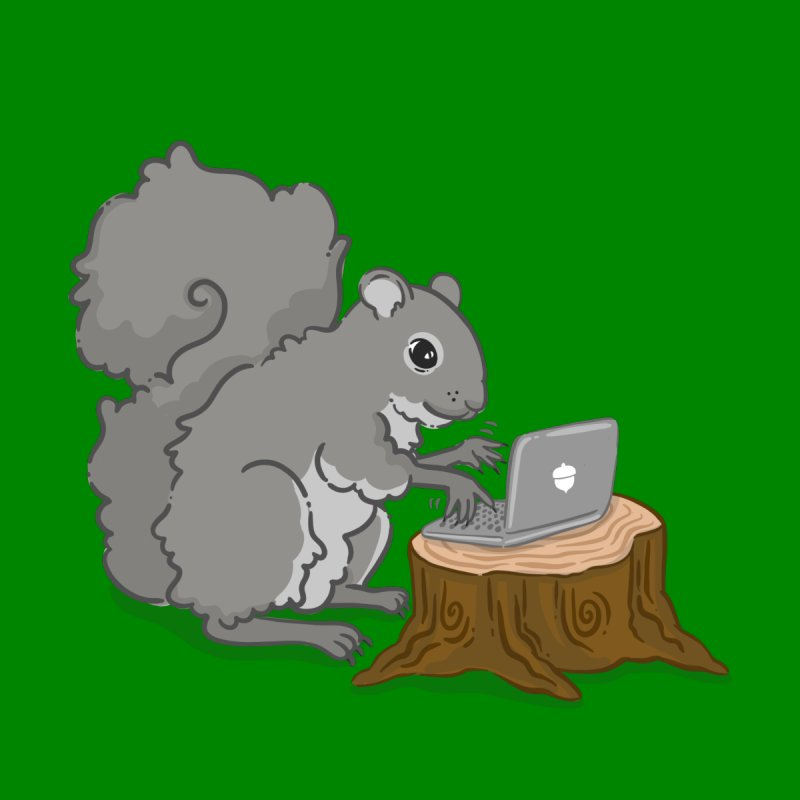 Coding Squirrel by Borja's T-Shirts