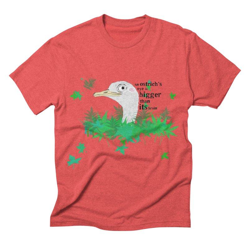 An Ostrich's eye is bigger than it's brain Men's Triblend T-shirt by Boshik's Tshirt Shop
