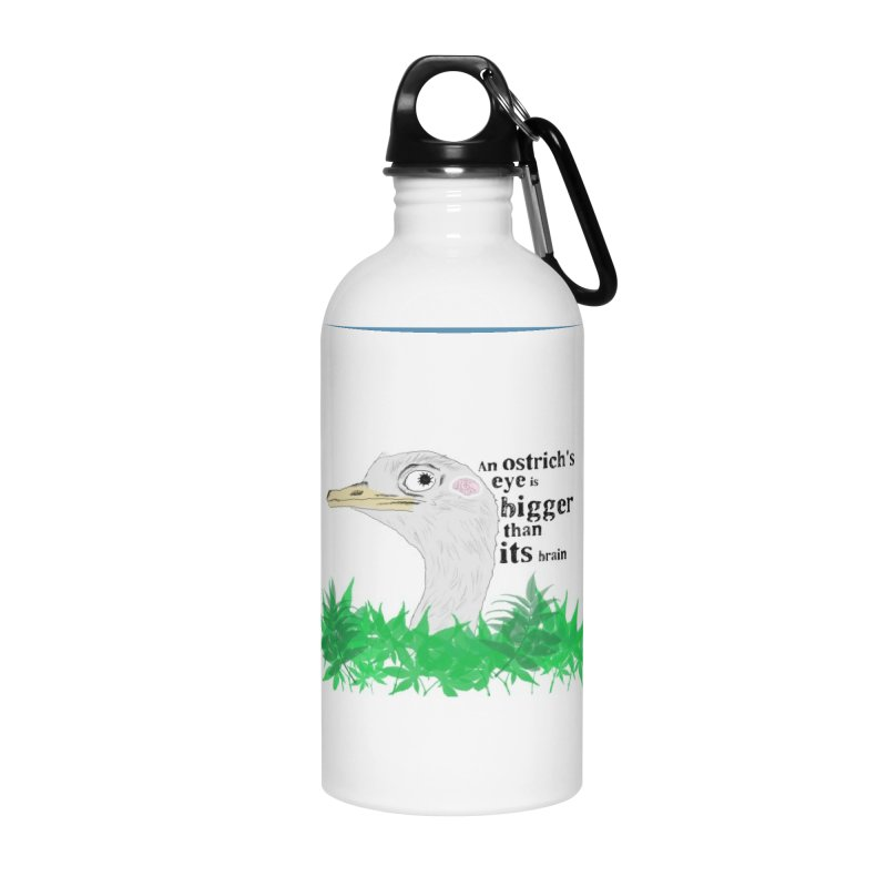 An Ostrich's eye is bigger than it's brain Accessories Water Bottle by Boshik's Tshirt Shop