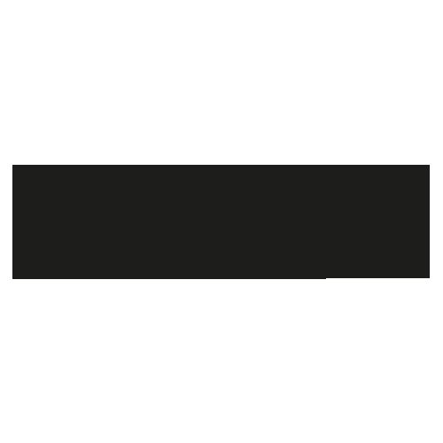 Boshik's Tshirt Shop Logo