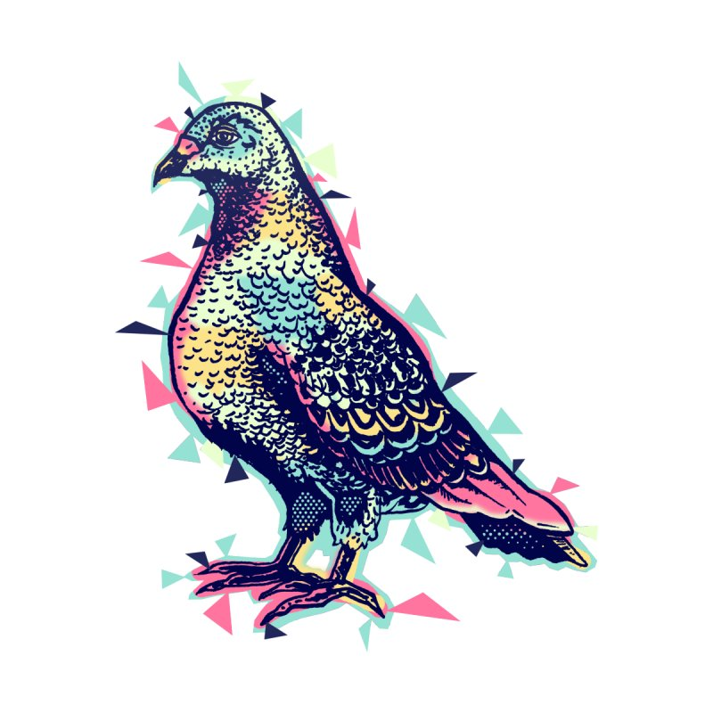 Lossy Pigeon Women's Zip-Up Hoody by Brad Leiby Art