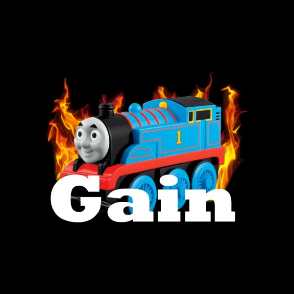 image for Gain Train