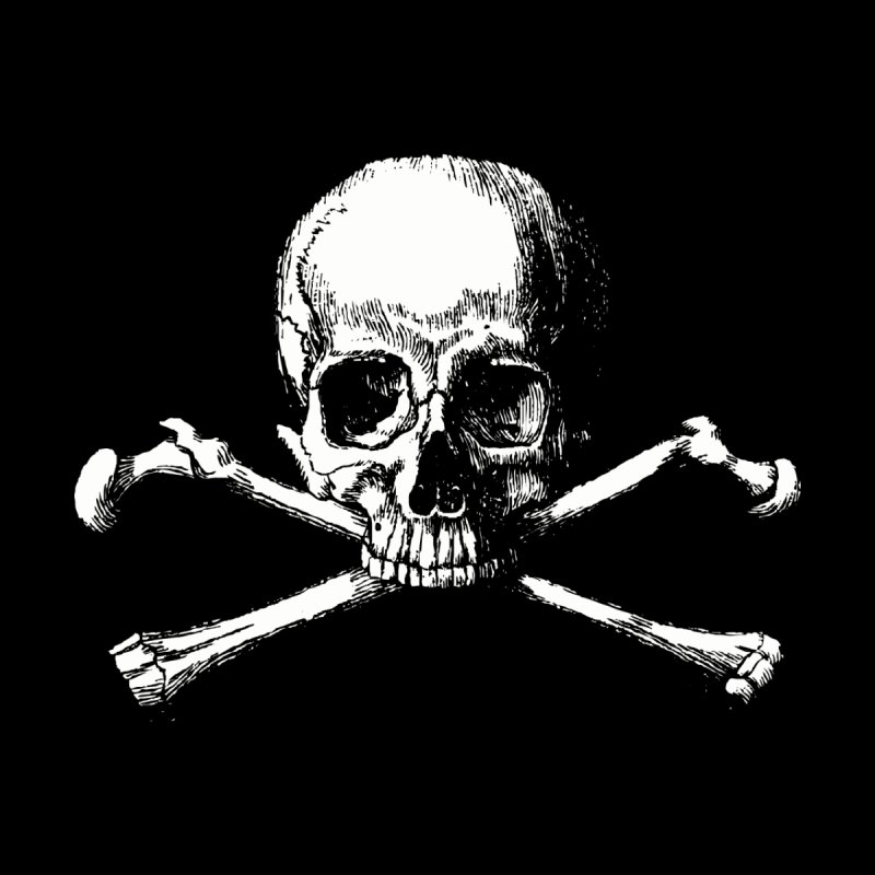 Jolly Roger None  by Brimstone Designs