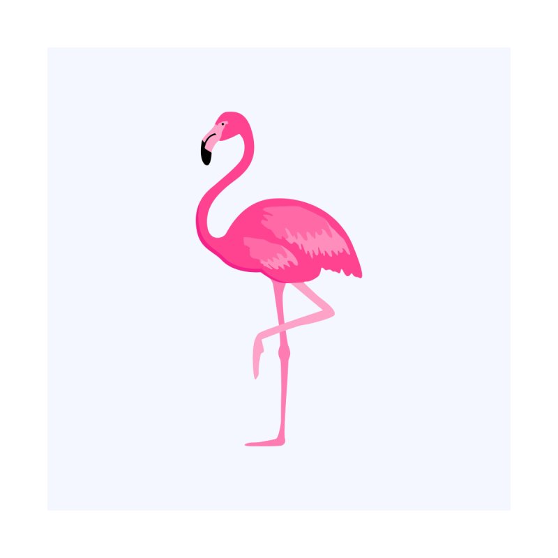 Flamingo! by Brittany Kristen Creative