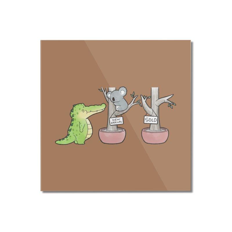 Buddy Gator - Shopping For A New Bed, Koala Home Mounted Acrylic Print by Buddy Gator's Artist Shop