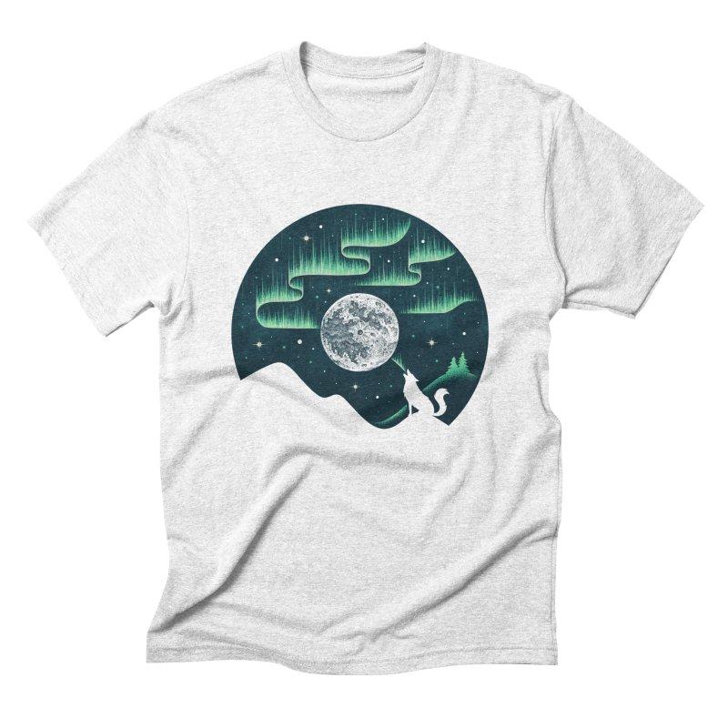 Arctic Tune Men's Triblend T-shirt by Buko