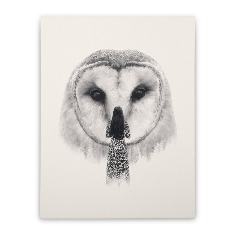 Nocturnal Friend Home Stretched Canvas by Buko