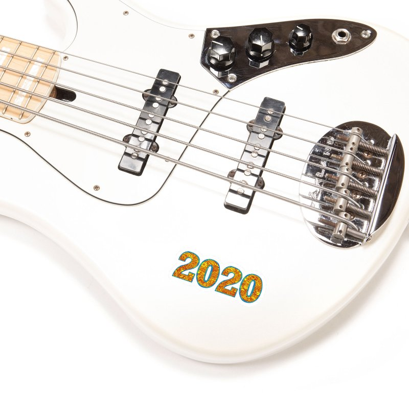 2020 Vision Accessories Sticker by BullShirtCo