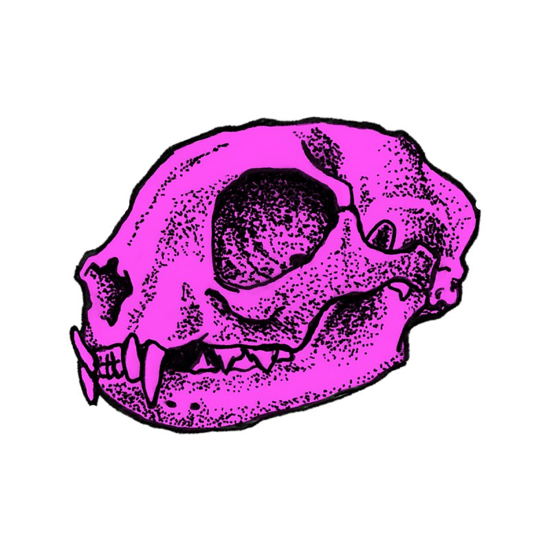 Pink Kitty Skull by Ben Licata's Artist Shop